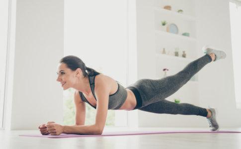 plank leg raise
